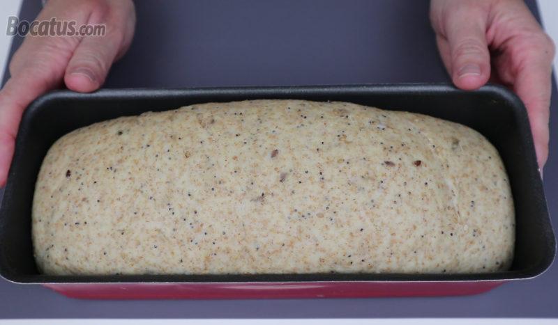 Masa de pan dentro del molde tras el reposo